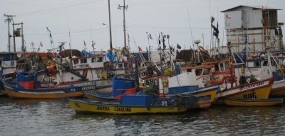 Fishing boats in the harbor