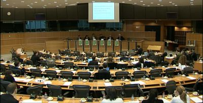 Hearing in the Petra Kelly Room, European Parliament, Brussels
